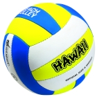 VINI BEACH VOLLEY BALL HAWAII
