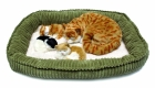PERFECT PETZZZ ORANGE TABBY M/